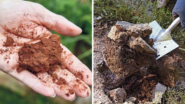clay-soil-lontto